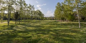 The Golf La Roca course shows its best shape after the investment of recent years.